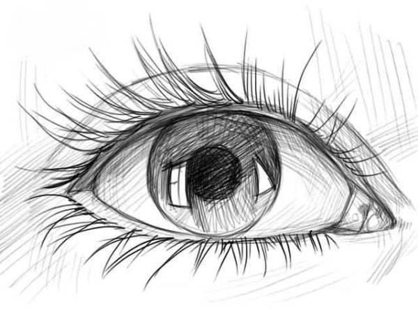 Как нарисовать глаза человека: поэтапное рисование ...