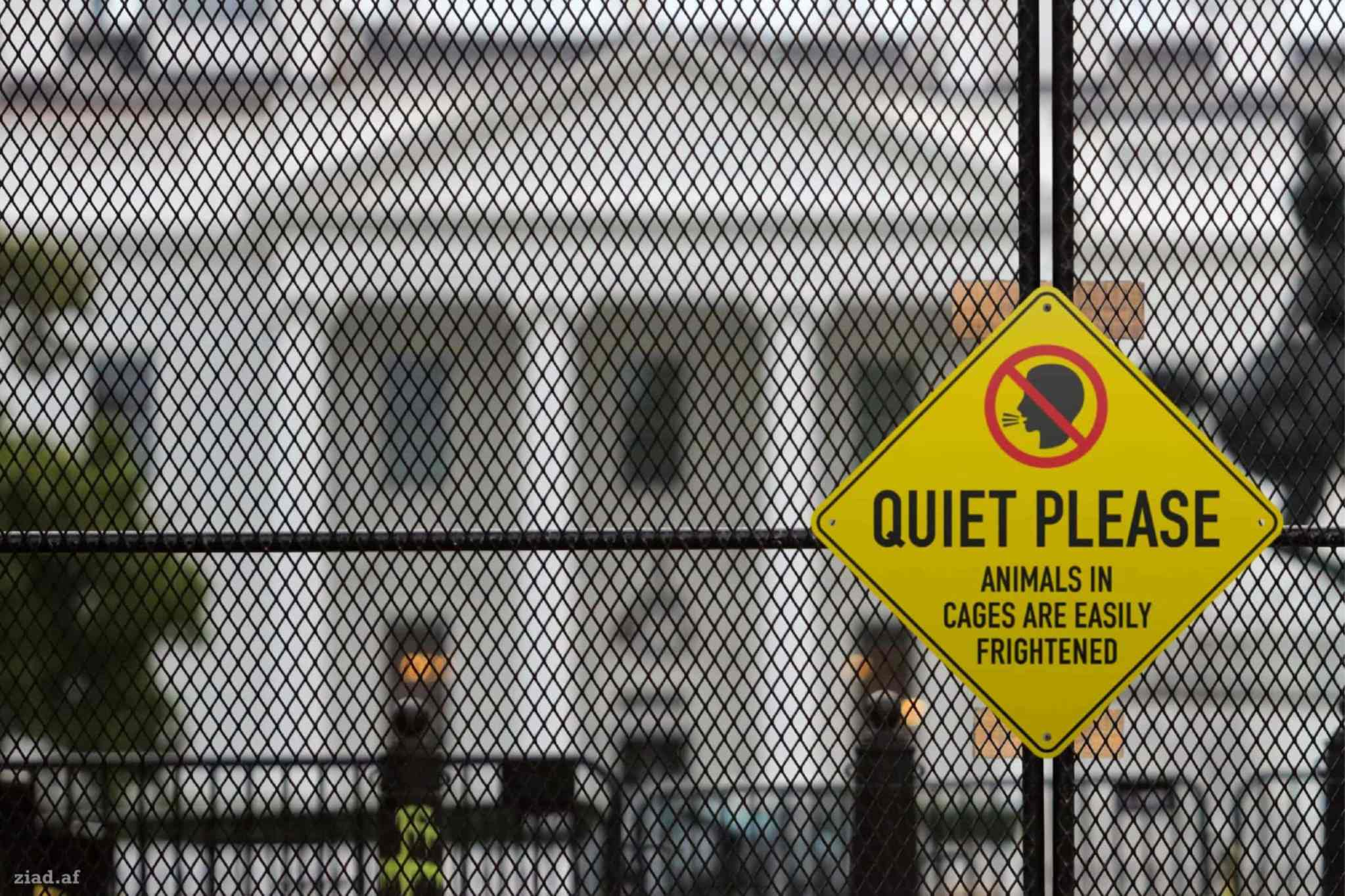 Quiet Please