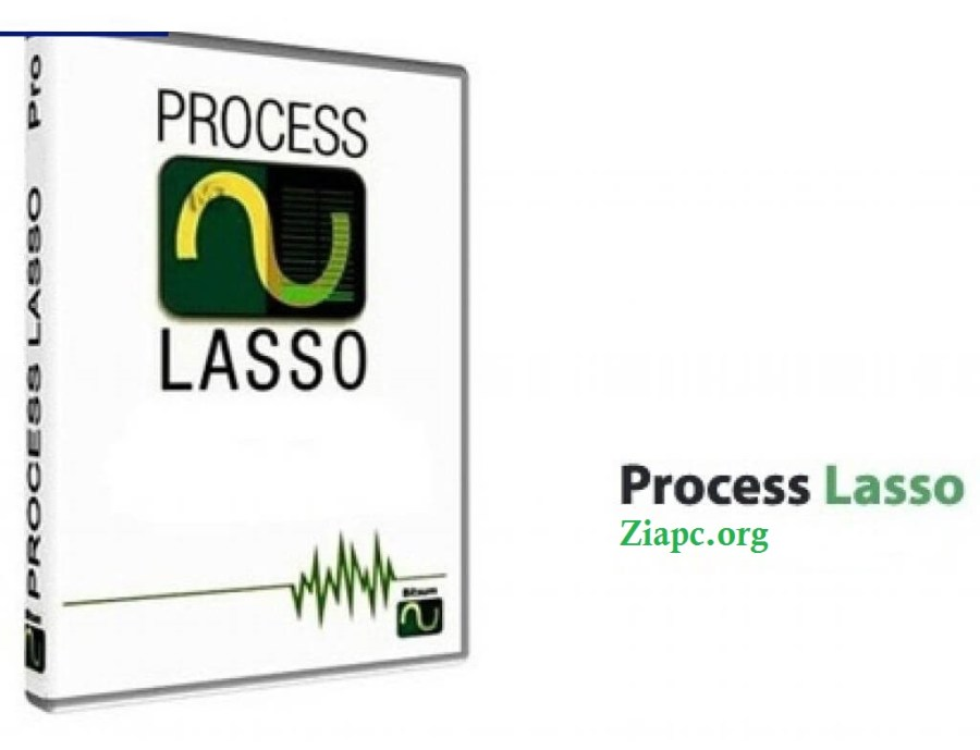 Process Lasso Pro License Key
