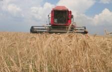 APIA: Subvenţia la hectar pe 2012, 106 euro