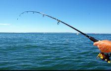 Liber la pescuit și vânătoare începând cu 15 mai