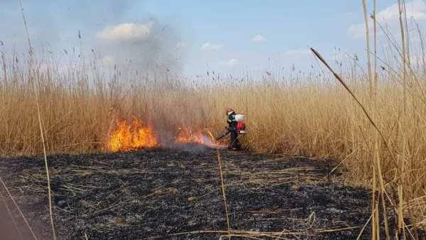 Pompierii pot aplica amenzi de până la 2500 lei pentru arderea ilegală a vegetației uscate