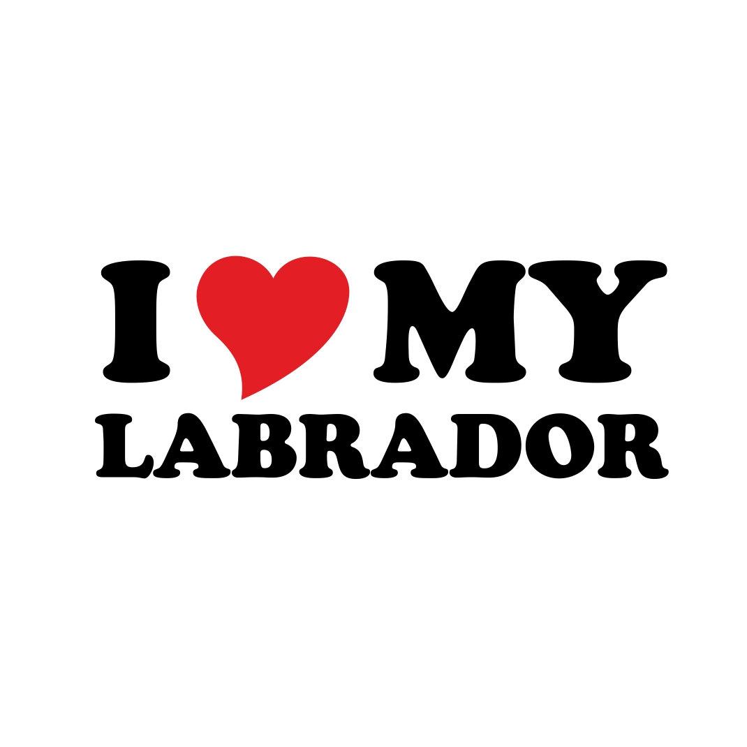 Download I Love Heart Labrador Dog graphics design SVG | vectordesign