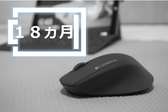 logicool Wireless Mouse M280