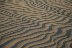 shadows on sand