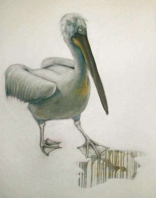 Blind Pelikan