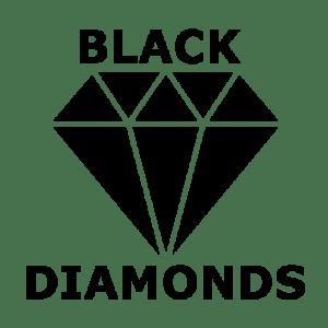 Hokejbal Black Diamonds