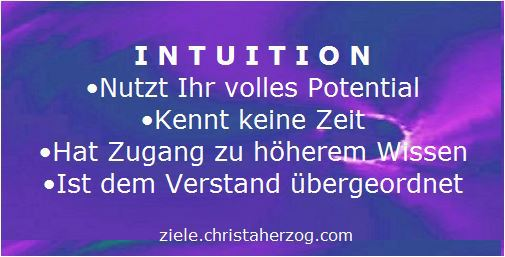 Intuition nutzt das volle Potential