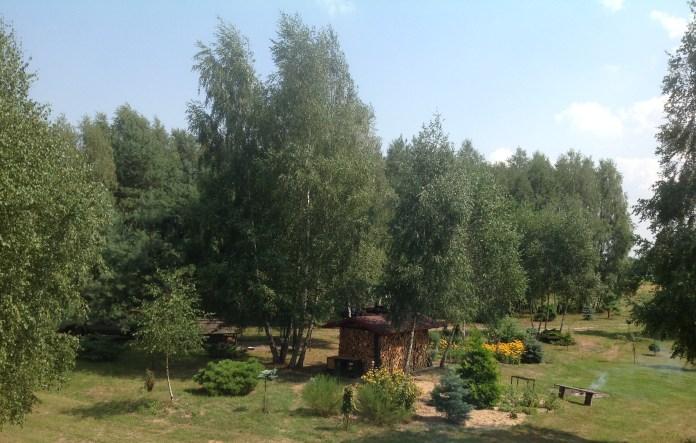 img_1066 Ogród w lesie. Sumin
