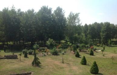 img_1071 Ogród w lesie - Sumin