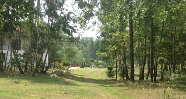 img_1083 Ogród w lesie. Sumin