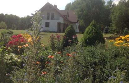 img_1090 Ogród wlesie - Sumin
