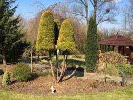 img_6285 Klasyka ogrodu. Classic garden.