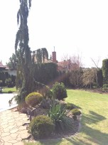 img_6289 Klasyka ogrodu. Classic garden.