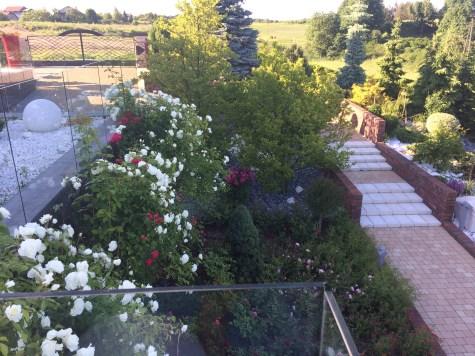 img_6429 Pawłówek - kaskadowy ogród