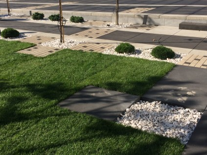 img_7048 Trawa z rolki. Roll grass.