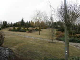 p3210068 Ogród naturalistyczny wGórznie - film wjakości 4k