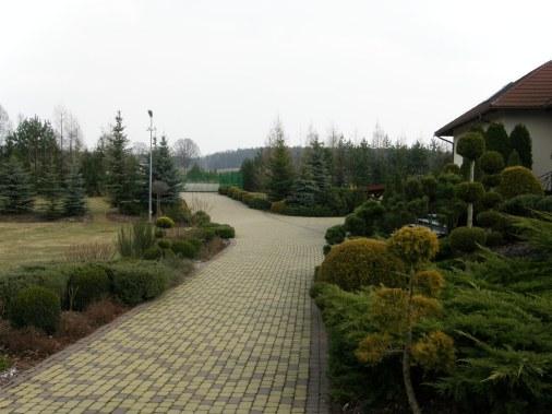 p3210069 Ogród naturalistyczny w Górznie - film w jakości 4k
