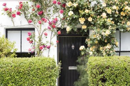 roses_cottage_door Wiosenne cięcie róż