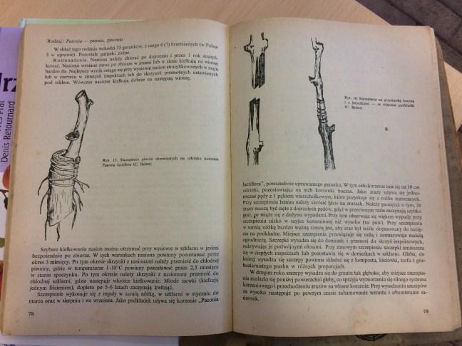 2-1 Polecana literatura natemat rozmnażania drzew ikrzewów