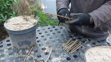 dsc00233 Warsztaty zrozmnażania roślin
