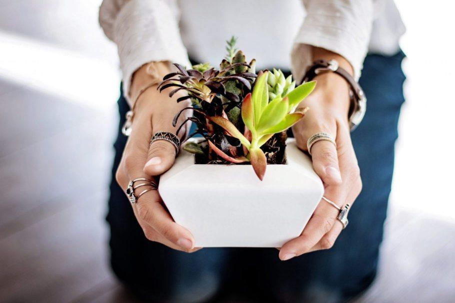dziewczyna-donica Miejski busz - renesans roślin we wnętrzach