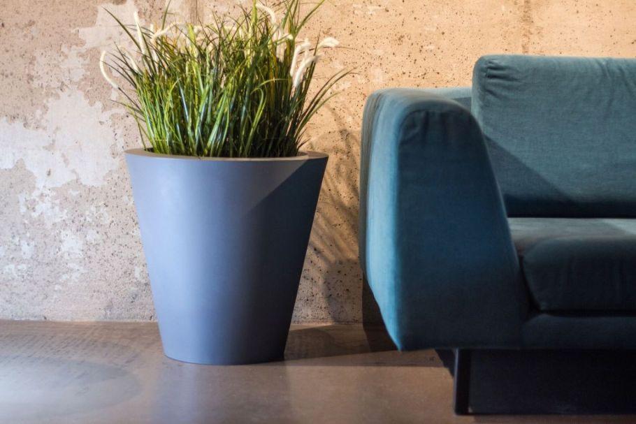 ovo-kolor-donica Miejski busz - renesans roślin we wnętrzach