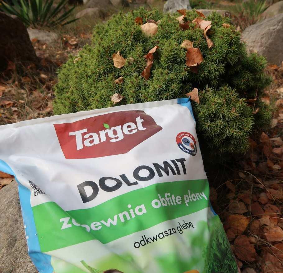 4a117a8e43b1034a08fc1598d05b34e2-1024x989 Zakładanie warzywnika. Jak sadzić ekologicznie