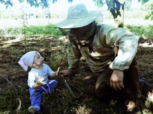 pszczelarz-300x225 Miód z ekologicznej pasieki