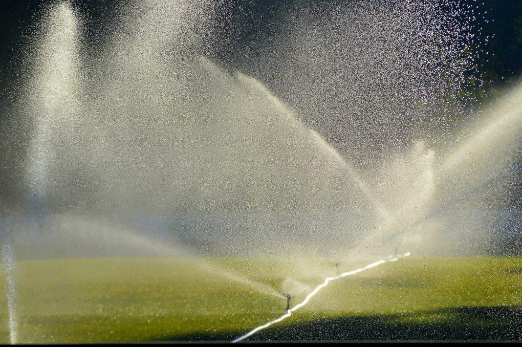 lawn-irrigation-2456123_1920-1024x681 Jak stworzyć gęsty trawnik?