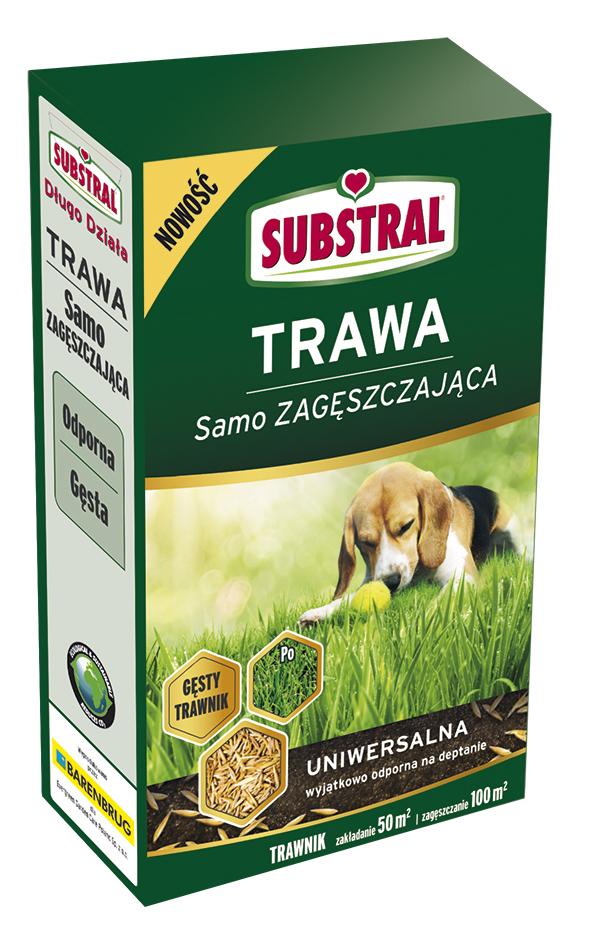 uniwersalna-1kg Jak stworzyć gęsty trawnik?