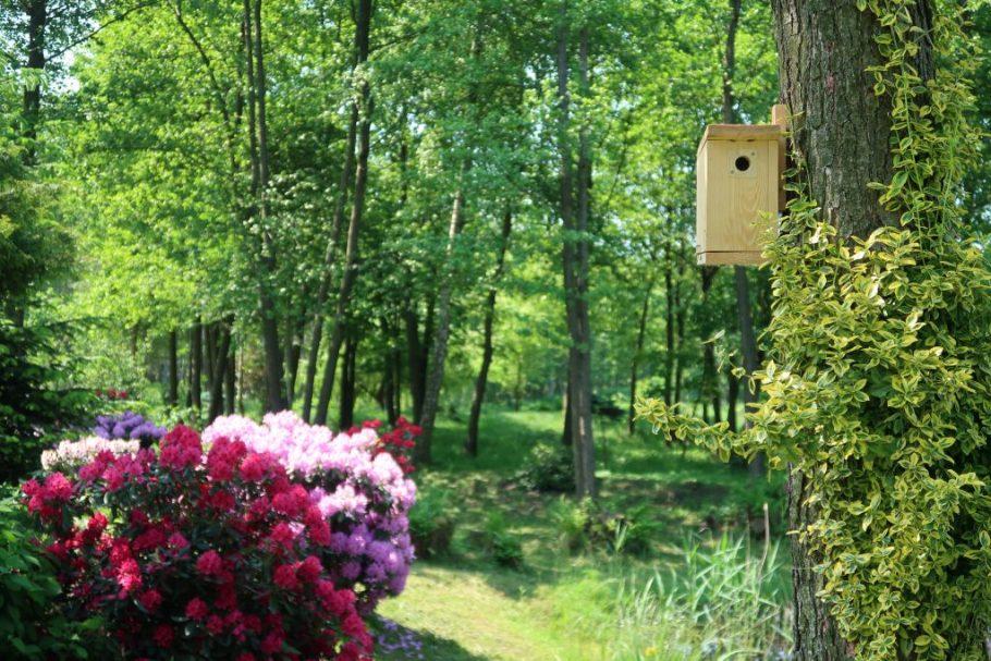 budka-dla-ma%C5%82ych-ptak%C3%B3w-1024x683 Jak prawidłowo dokarmiać ptaki zimą