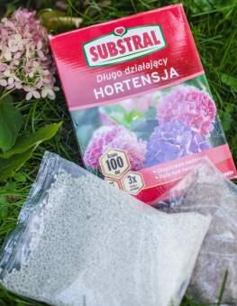 hortensje-nawoz-długo-dzialajacy-233x300 Prace w ogrodzie na przełomie lutego i marca – Zielone Porady 36