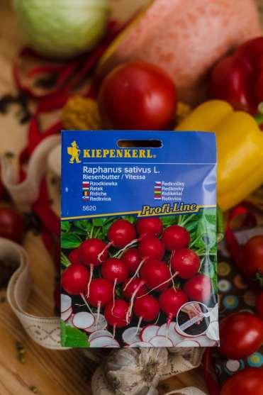 rzodkiewka-zielone-pogotowie-1-200x300 Zakładanie warzywnika. Jak sadzić ekologicznie