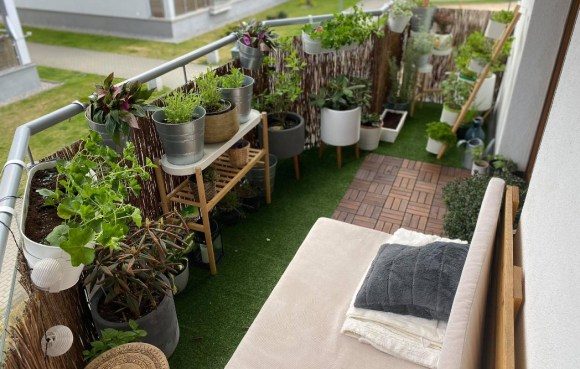 balkon-1-1024x653 Jak dbać orośliny kwitnące wdonicach