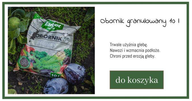 obornik-1024x538 Przygotowanie warzywnika na zimę – Zielone Porady 44