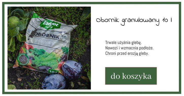 obornik-1024x538 Zakładanie warzywnika. Jak sadzić ekologicznie