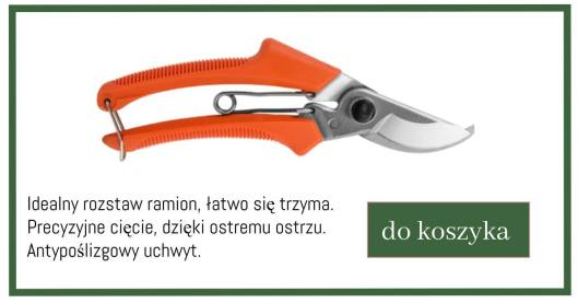 sekator-V-1024x538 Jak pozbyć się rdzy z narzędzi?