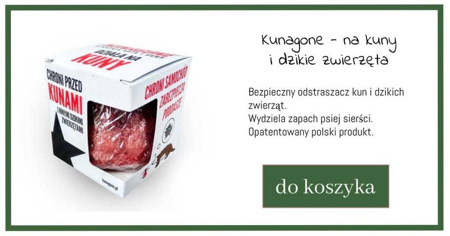 kunagone-1024x538 Sposoby na krety, nornice, karczowniki
