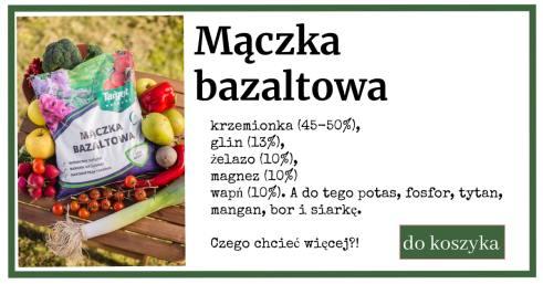 maczka-bazaltowa-reklama-1024x538 Jesień - czas na mączkę bazaltową