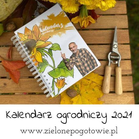 Kalendarz-ogrodniczy-2021-1 Jesień i zima na grządkach - Zielone Porady 30