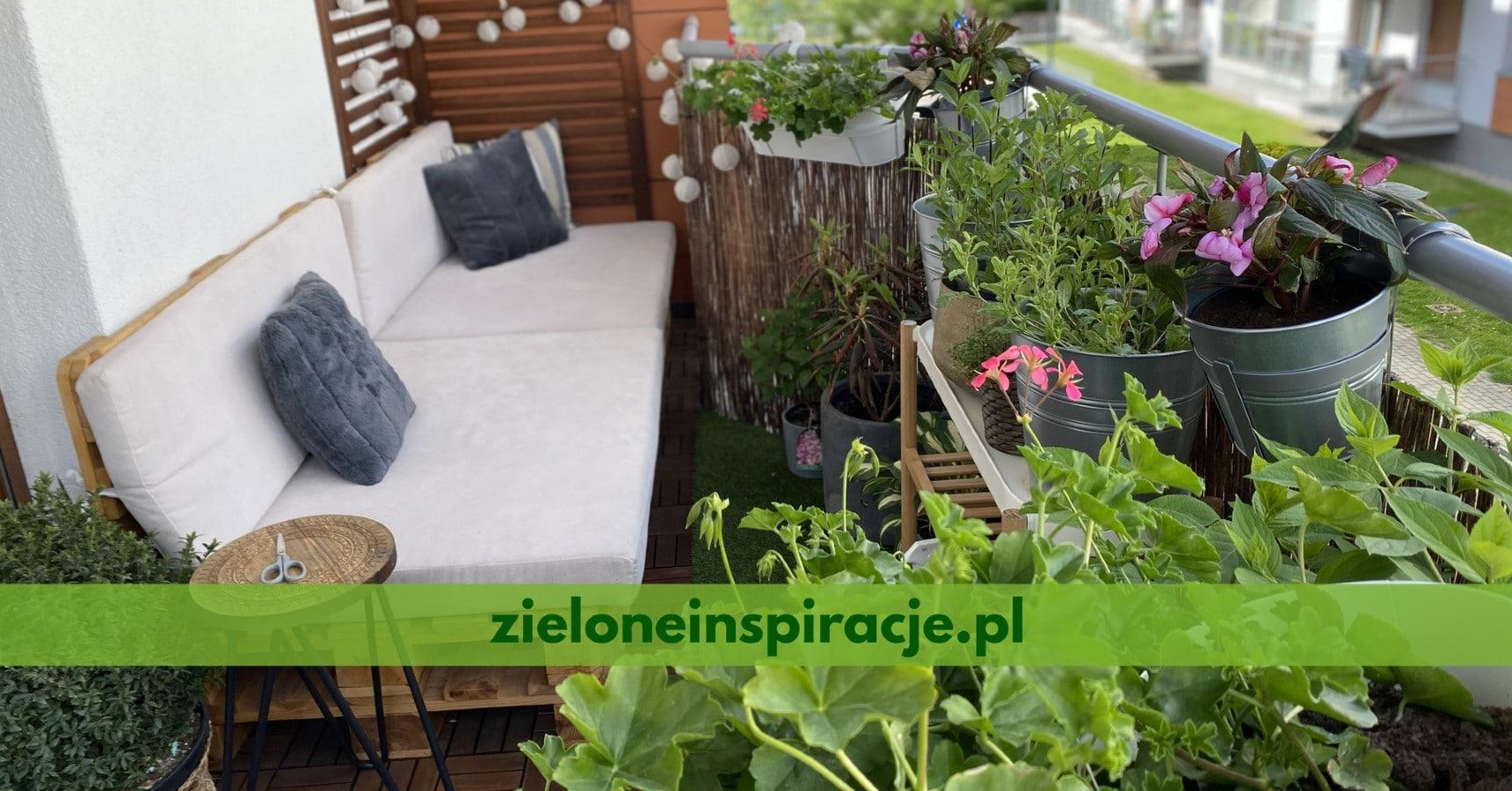 zieloneinspiracje.pl