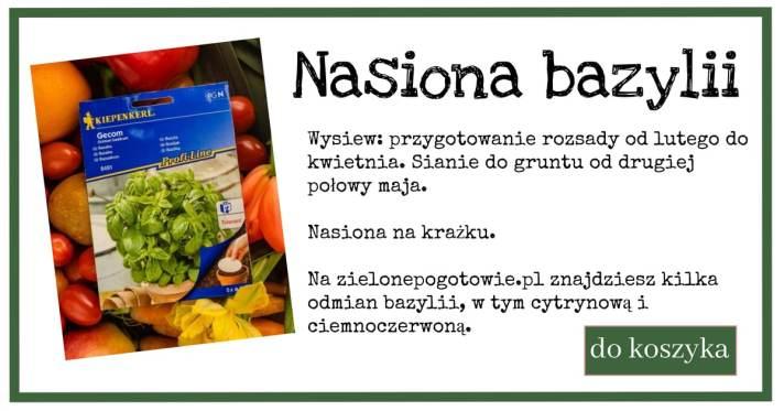 Bazylia-1-1024x538 Bazylia odstrasza zapachem?