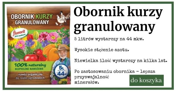 obornik_kurzy-1024x538 Obornik obornikowi nierówny
