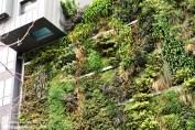 green_walls_zielone_sciany_ogrody_werykalne_architektura_krajobrazu_krakow_zielen_w_mieszkaniu22