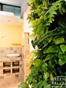 zielona sciana w salonie łazienek Komplet w Nowym Targu