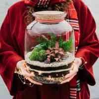 Zestaw: świąteczny ogród leśny w bańce