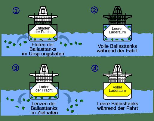 Tiere im Ballastwasser