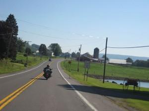 biker on finger lakes road
