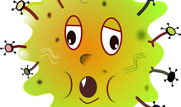 What is an Allergy? 1